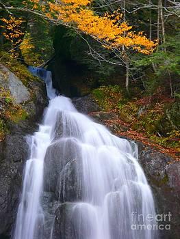 Christine Stack - Autumn Waterfall II