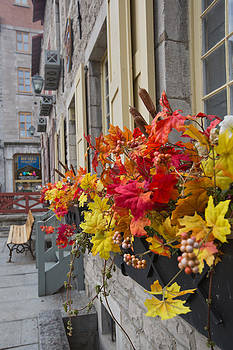 Autumn window box by Gordon  Grimwade