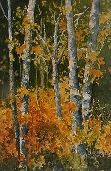 Autumn Woodland by Lynne Wright