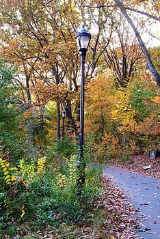 Autumn073 by Kathleen Collins