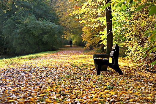 Autumnbench by Ste Flei