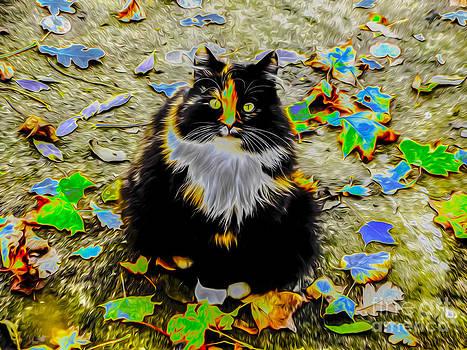 Algirdas Lukas - Autumns Cat
