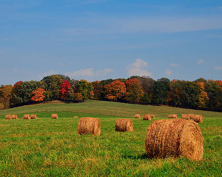 Autumn's Countryside by Betsy Armour