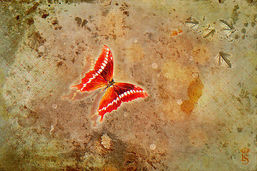 Autumn's Flight by Li   van Saathoff