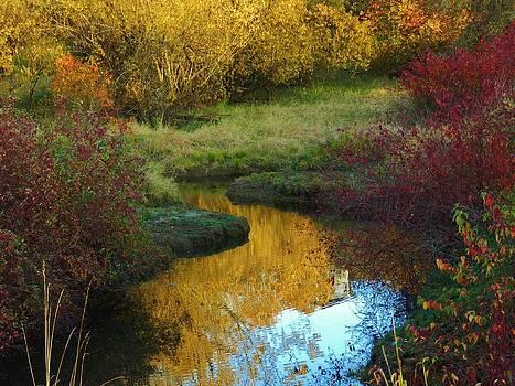 Charles Lucas - Autumns Stream