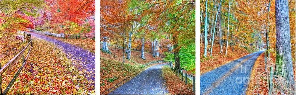 Autumns Way by John Kelly