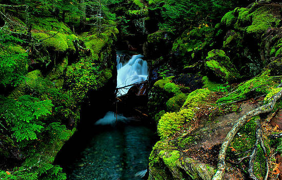 Matthew Winn - Avalanche Canyon Falls