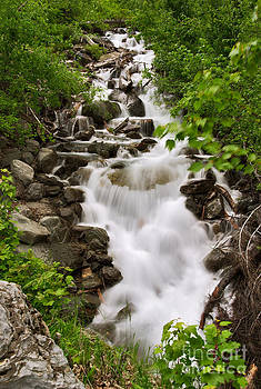 Charles Kozierok - Avalanche Creek Cascade