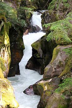 Connie Zarn - Avalanche Creek Glacier NP