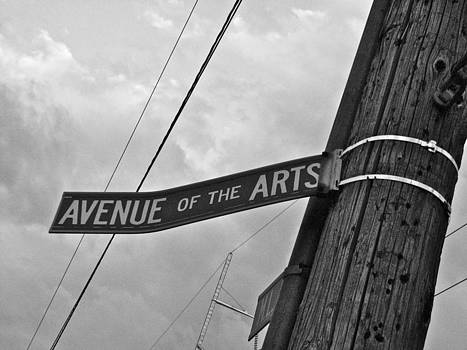 Sandy Tolman - Avenue of the Arts - 0872