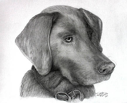 Graphite Pet Portraits by Diana Black
