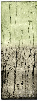 Awakening - Etching - Spring - Layers Of Earth - Plants - Flower - Fine Art Print - Stock Image by Urft Valley Art