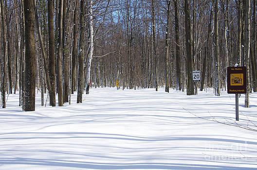 Elaine Mikkelstrup - Awenda Provincial Park in Winter