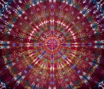 Ayahuasca by Courtenay Pollock