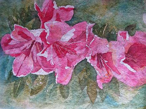 Azalea Blooms by Fran Haas