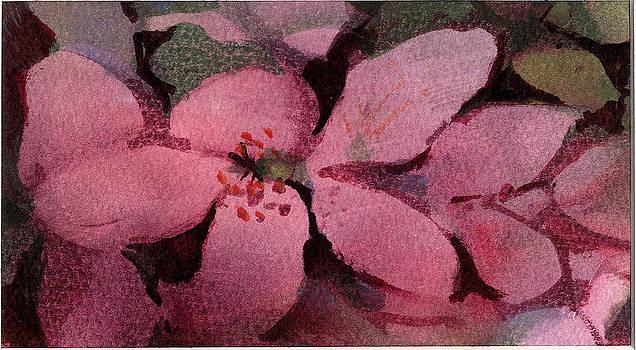Azaleas by Pat Percy