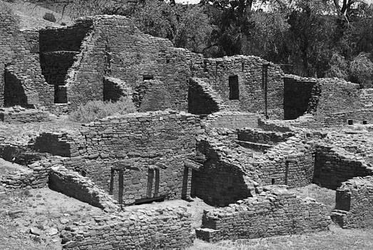 Aztec Ruin by Shirin McArthur