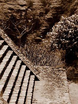 Aztec temple by David Olson