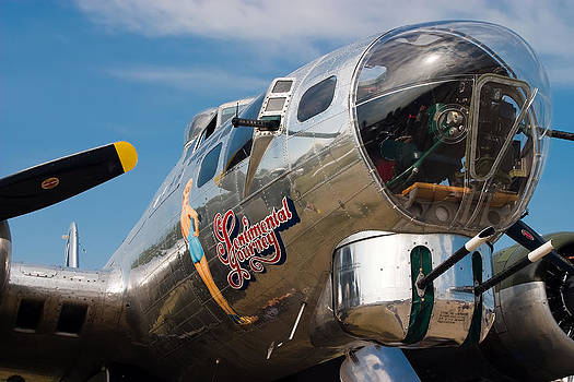 Adam Romanowicz - B-17 Flying Fortress