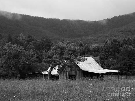 B and W Smokey Mountain Cabin by Annette Allman