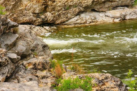 Babbling Brook by Joan Bertucci