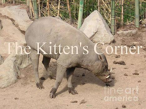 Babirusa Pig C 09 066 by Lorrie Bible
