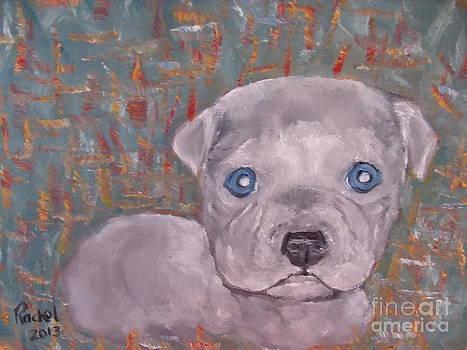Baby Blue Pit by Rachel Carmichael