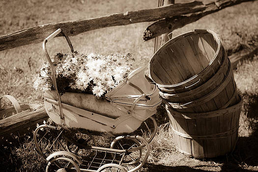 Baby Buggy Planter by Jeffrey Cohen