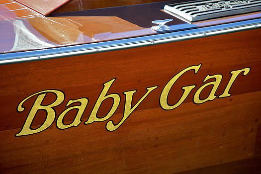 Steven Lapkin - Baby Gar