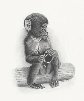 Baby Monkey by Sandra Weiner