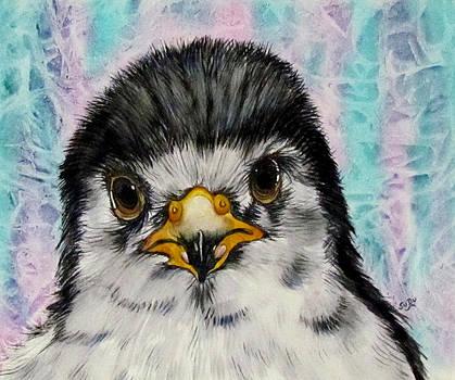 Susan Duxter - Baby Penguin