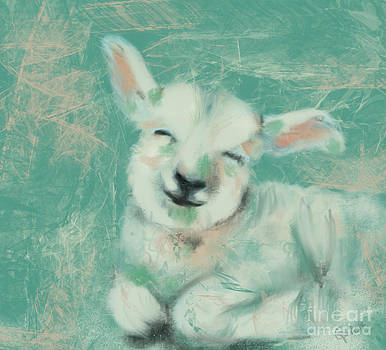 Baby Sheep by Go Van Kampen