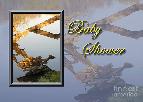 Jeanette K - Baby Shower Fish
