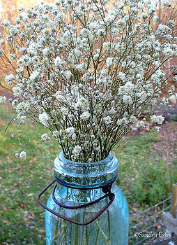 Baby's Breath Bouquet by Sandra Estes
