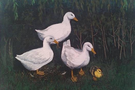 Babysitting Ducks by Lisa Marina
