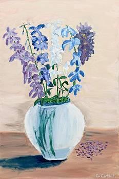 Back Bay Flowers by Carmela Cattuti