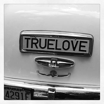 Back Of The 1956 Rolls Royce by Deirdre Ryan