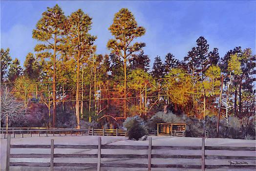 Back Paddock Sunrise by Ben Bensen III
