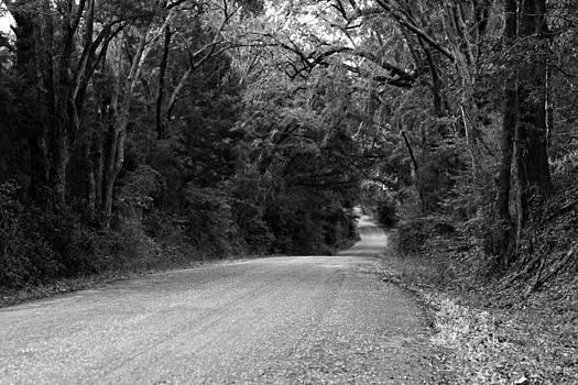 Back Road by Bryan Davis