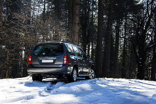 Newnow Photography By Vera Cepic - Back side of Mazda Tribute in the mountain forest