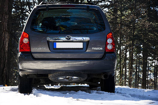 Newnow Photography By Vera Cepic - Back side of sport utility vehicle Mazda Tribute