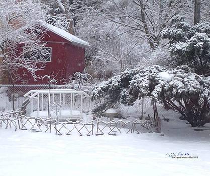 Back Yard Winter by Steph Maxson