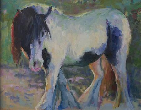 Backlit by Elaine Hurst