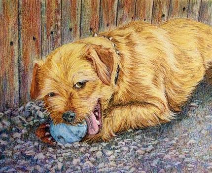 Backyard Ball by Karen Curley