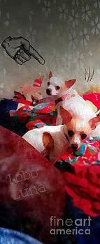 Bad Dogs by Denisse Del Mar Guevara