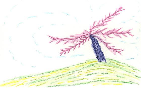 Bad Hair Day Palm Tree by Barbara Burns