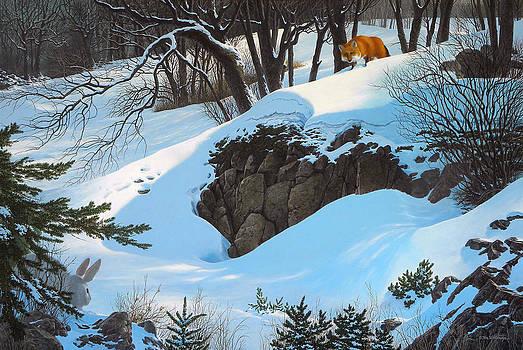 Bad Hare Day by Tom Wooldridge
