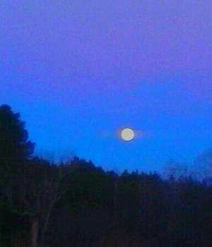 Bad Moon Rising by Sarah Orr