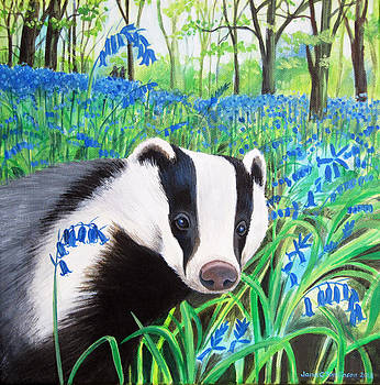 Badger and bluebells by Jane Tomlinson