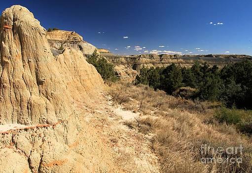 Adam Jewell - Badlands Canyon